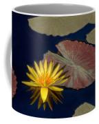Sun-kissed Water Lily Coffee Mug