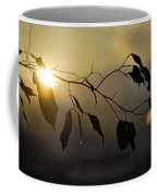 Sun Leaves Coffee Mug