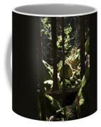 Sun On Moss Coffee Mug