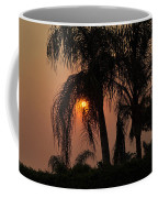 Sun Setting Behind The Queen Palm Covered In Smoke Coffee Mug