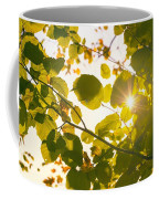 Sun Shining Through Leaves Coffee Mug