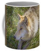 Sun Soak Coffee Mug