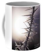 Sun Spikes Coffee Mug