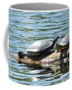 Sun Stretching Turtle And Youngster Coffee Mug