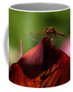 Sunbathing Dragonfly Coffee Mug