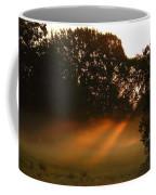 Sunbeams And Fog Coffee Mug