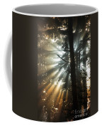 Sunbeams Through Trees Coffee Mug