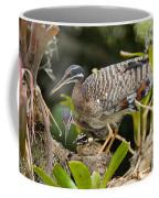 Sunbittern Family Coffee Mug
