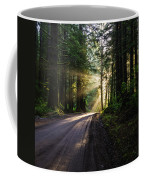 Sunburst At Redwood National Park Coffee Mug