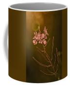 Sundown Coffee Mug
