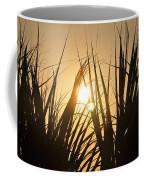 Sundown Through The Grass Coffee Mug