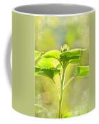 Sundrenched Sunflower - Digital Paint Coffee Mug