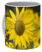 Sunflower Blossom Coffee Mug