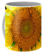Sunflower Close-up Coffee Mug