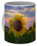Sunflower Field Coffee Mug by Debra and Dave Vanderlaan