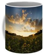 Sunflower Field Sunset Coffee Mug