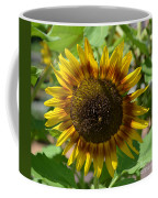 Sunflower Glory Coffee Mug
