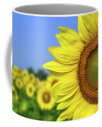 Sunflower In Sunflower Field Coffee Mug