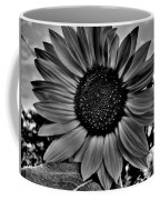 Sunflower In Black And White Coffee Mug
