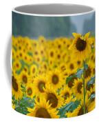 Sunflower Rain Sussex Nj Coffee Mug