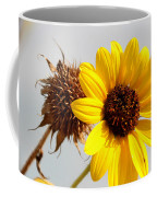 Sunflower Stages Coffee Mug