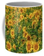 Sunflowers Helianthus Annuus Growing Coffee Mug