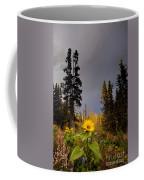 Sunflowers In Northern Garden In Fall Coffee Mug