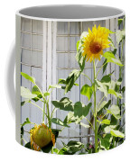 Sunflowers In The Window Coffee Mug
