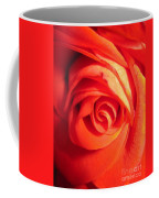 Sunkissed Orange Rose 11 Coffee Mug