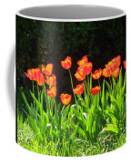 Sunkissed Tulip Garden Coffee Mug