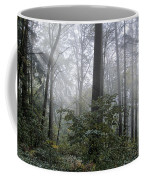 Sunlight And Fog Coffee Mug