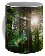Sunlight Forest Coffee Mug