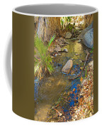 Sunlight On Andreas Creek In Indian Canyons-ca Coffee Mug