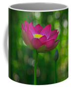 Sunlight On Lotus Flower Coffee Mug