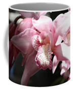 Sunlight On Pink Orchid Coffee Mug