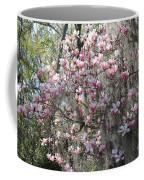 Sunlight On Saucer Magnolias Coffee Mug