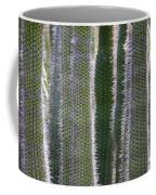 Sunlight Through Cacti Coffee Mug