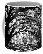Sunlight Through Spanish Oak Tree - Black And White Coffee Mug