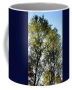 Sunlit 14-1 Coffee Mug