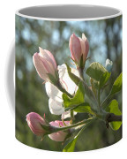 Sunlit Apple Blossoms Coffee Mug