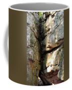 Sunlit Boulder On Shades Mountain Coffee Mug