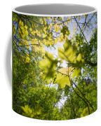 Sunlit Leaves Coffee Mug