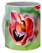Sunlit Miniature Orchid Coffee Mug by Kaye Menner