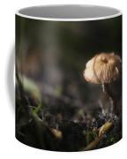 Sunlit Mushroom Coffee Mug