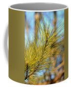 Sunlit Pine Leaders Coffee Mug