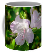 Sunlit Rhododendrons Coffee Mug