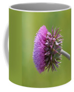 Sunlit Thistle Coffee Mug