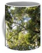 Sunlit Tree Tops Coffee Mug