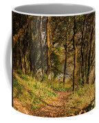 Sunlit Woods In Late Autumn Coffee Mug