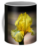 Sunlit Yellow Iris Coffee Mug